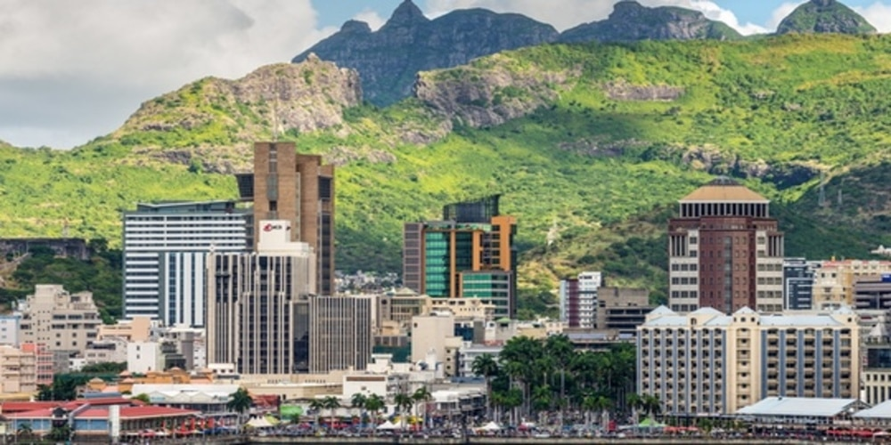 There has been a considerable flow of direct investment to Africa during the last decade, in which Mauritius has played a considerably large role.